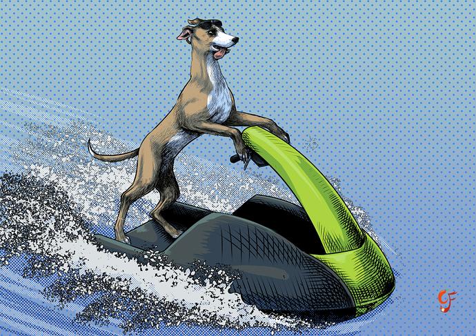 GreyhoundJetskism
