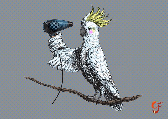 Parrot_Makeupsm